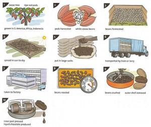 postopek pridelave čokolade